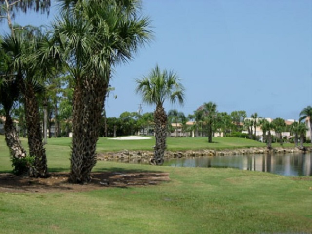 Forest Lakes Golf Course View