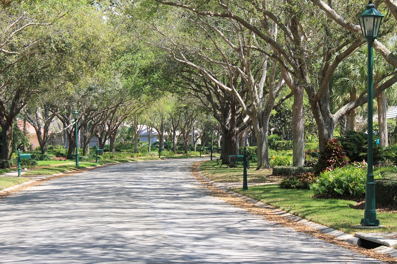 Colliers Reserve Street View